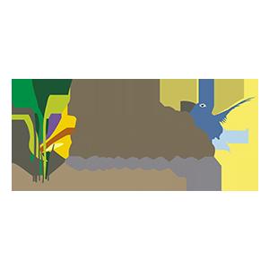 Grupo Divina Vó - Vivenda dos Colibris, Maravista